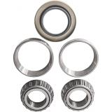 Z1V1, Z2V2, Abec-1-3-5 Deep Groove Ball Bearing (6006-2RS)